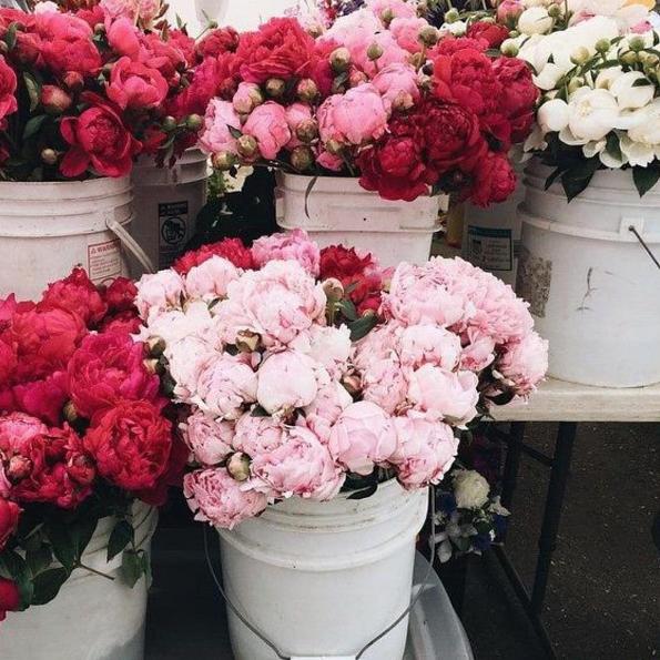 shop hoa tươi tại TP.Hồ Chí Minh