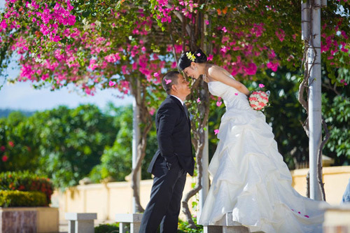 chụp hình cưới hoa giấy